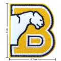 Birmingham Southern Panthers Style-1 Embroidered Iron On/Sew On Patch