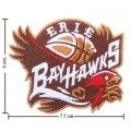 Erie BayHawks Style-1 Embroidered Sew On Patch