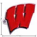 Wisconsin Badgers Style-1 Embroidered Iron On/Sew On Patch